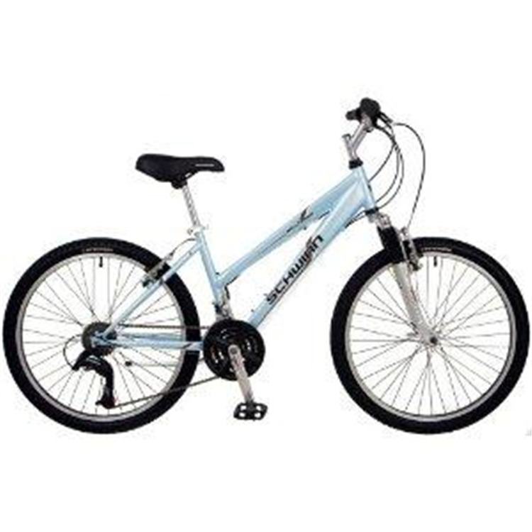 Schwinn High Timber Girl's 24