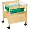 See-thru Sensory Table - Childrens