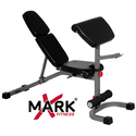 FID Weight Bench with Preacher Curl