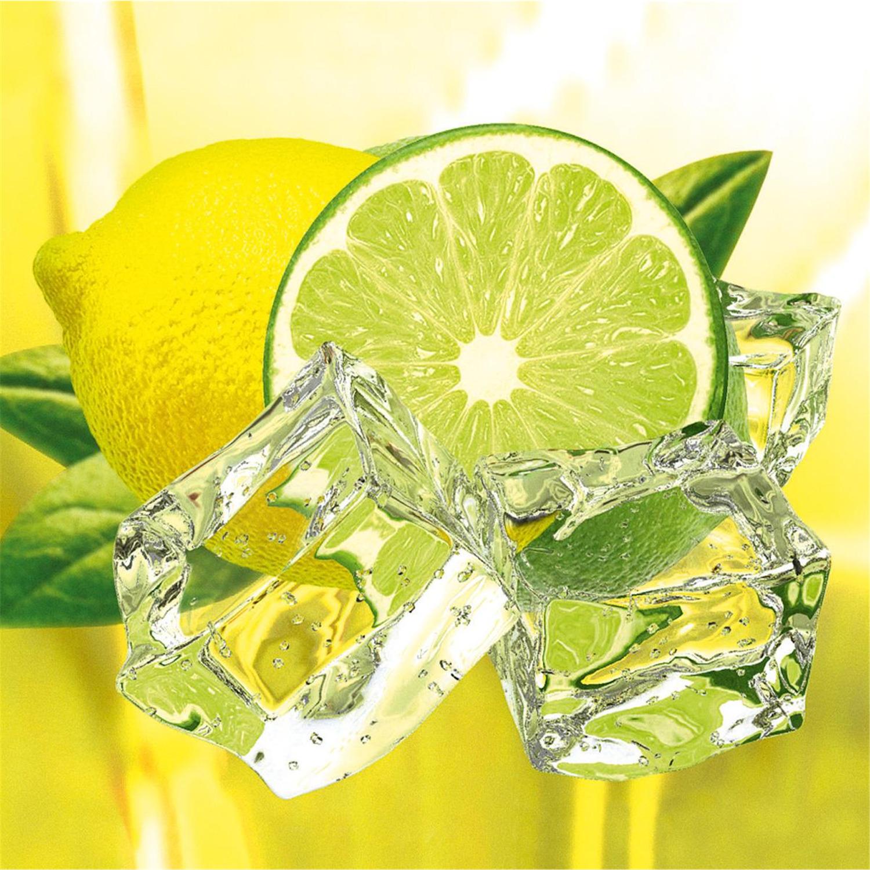 Deco Glass Wall Decor - Art on Glass - Fresh Lemon & Lime 19.75-by ...