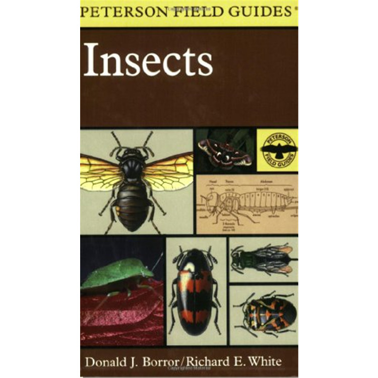 Peterson Field Guide: Insects