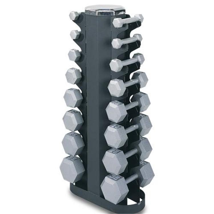 Champion 2 Sided Vertical Dumbell Rack