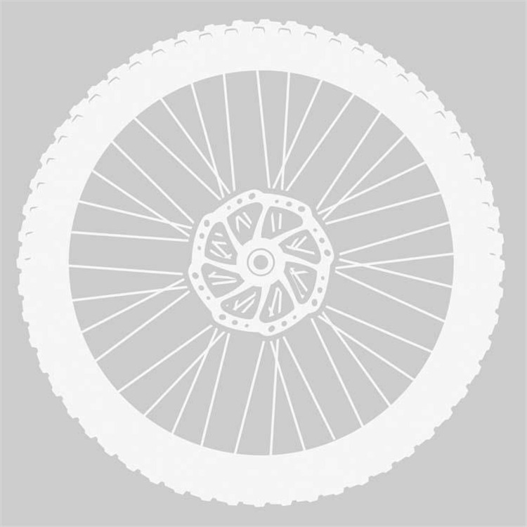 Sticker Mountain Bike White