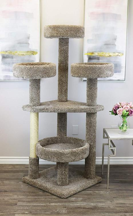 New Cat Condos Prestige Cat Trees Main Coon Cat Tower