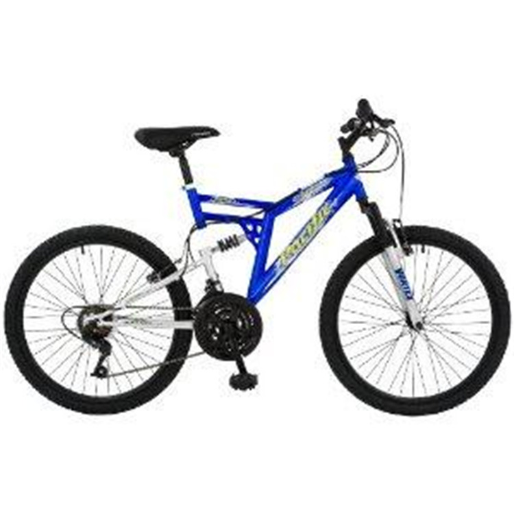 Pacific Chromium Boy's Mountain Bike