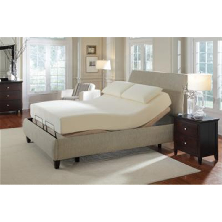 Coaster Premier Casual Beige Twin Adjustable Bed