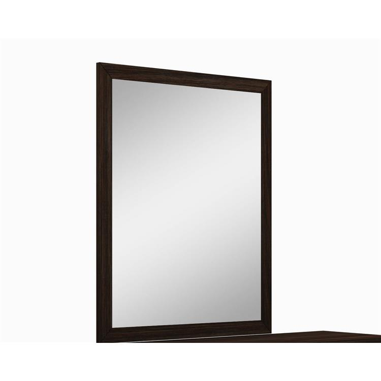 HomeRoots Decor 43-inch Refined Wenge High Gloss Mirror