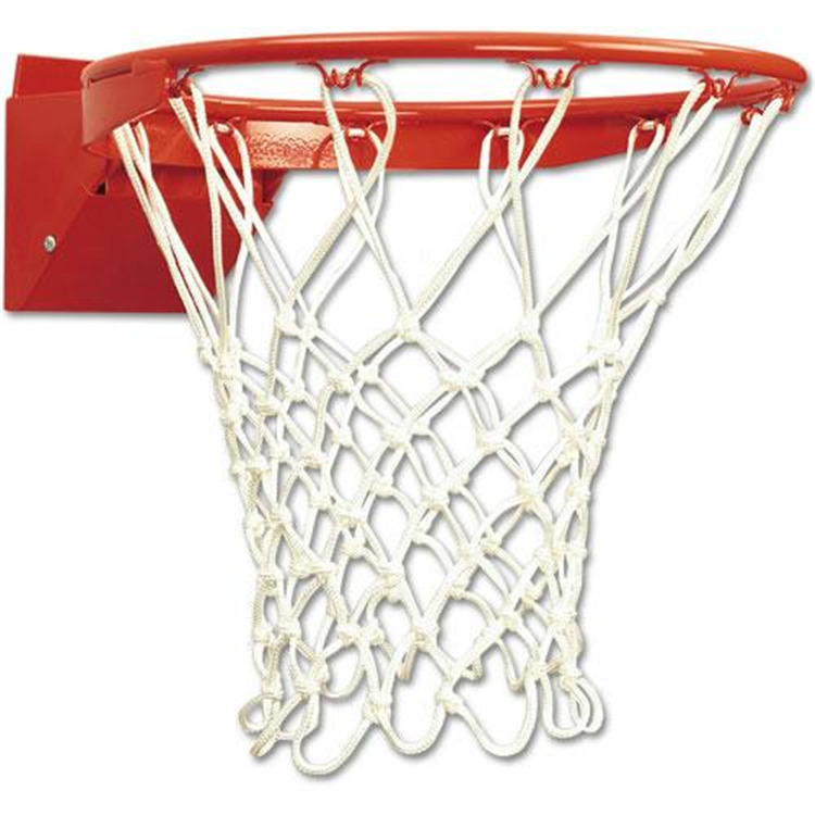 Bison Design Bison Protech Breakaway Basketball Goal