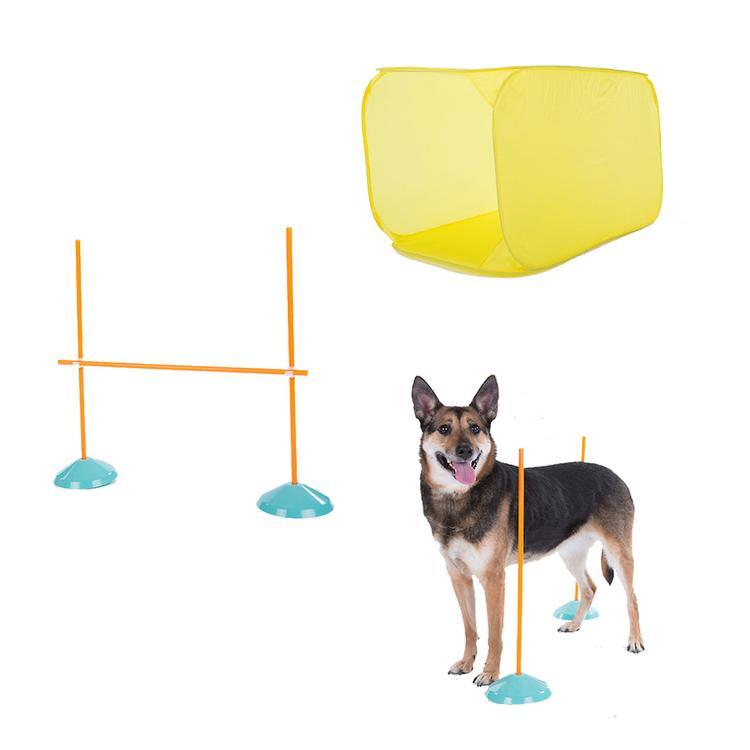 Dog Agility Starter Kit Indoor