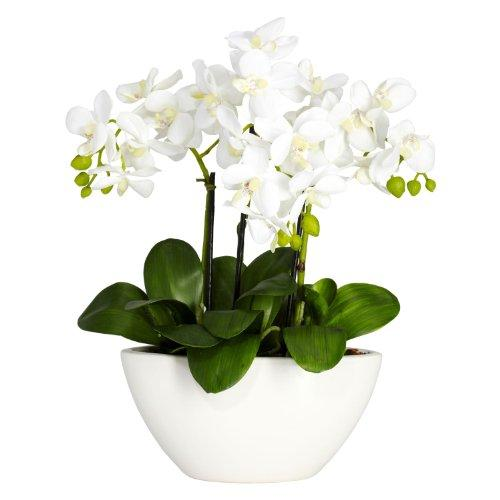 Nearly Natural Phalaenopsis Silk Flower Arrangement [Item # 4804A]