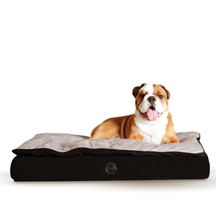 Feather Top Ortho Pet Bed