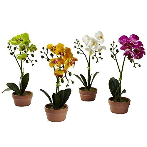Nearly Natural Phalaenopsis Orchid with Clay Vase (Set of 4)