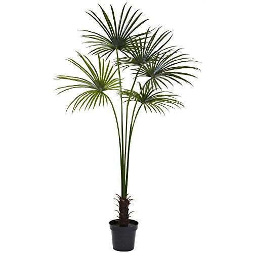 7? Fan Palm Tree UV Resistant (Indoor/Outdoor)