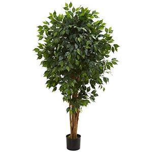 5.5? Ficus Artificial Tree