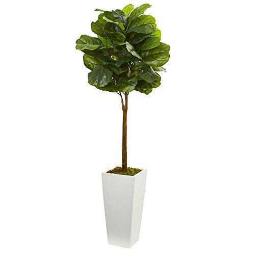 4? Fiddle Leaf Artificial Tree in White Tower Planter