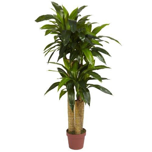 Nearly Natural 4' Corn Stalk Dracaena Silk Plant (Real Touch)