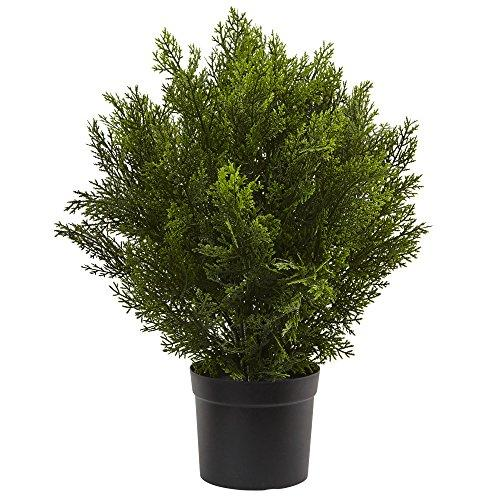 Nearly Natural 2? Cedar Artificial Bush (Indoor/Outdoor)