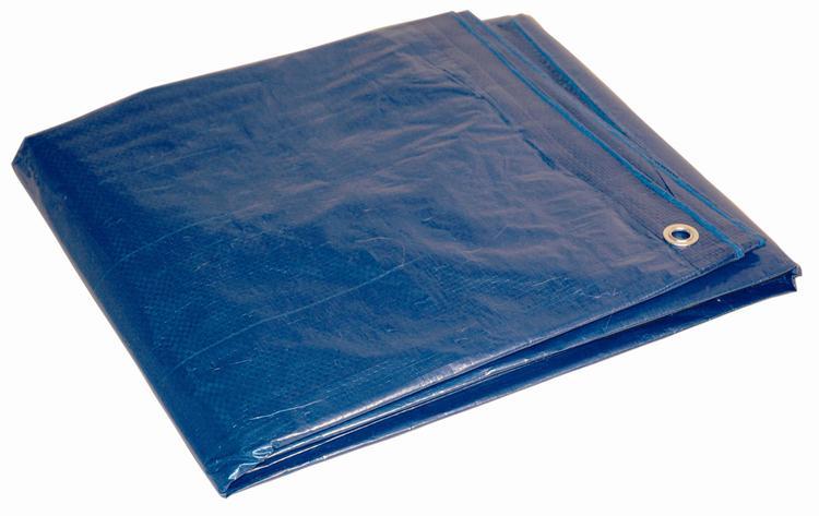00068 Tarp Blue 6X8'
