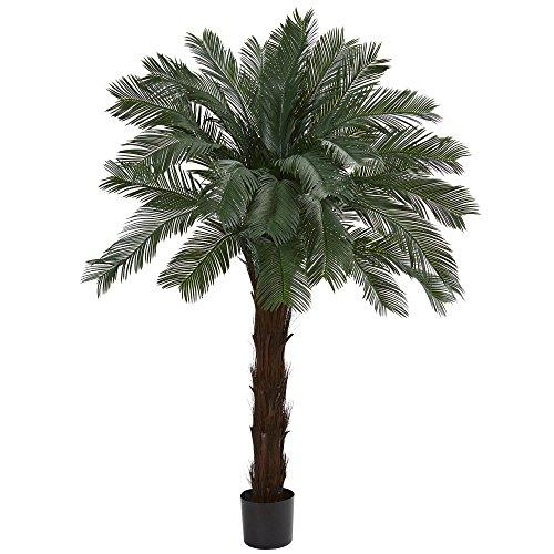 6? Cycas Artificial Tree, UV Resistant (Indoor/Outdoor)