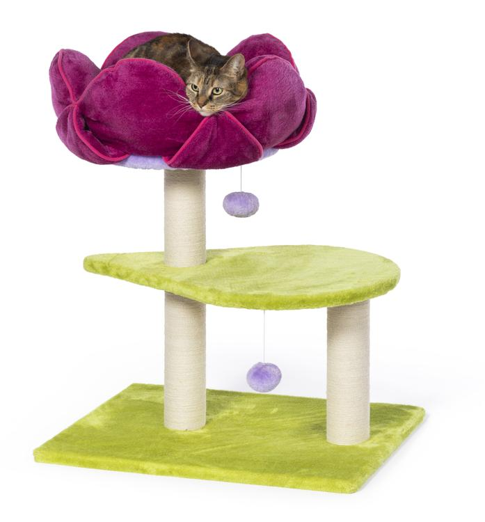 Prevue Pet Kitty Power Paws Flower Power 7320