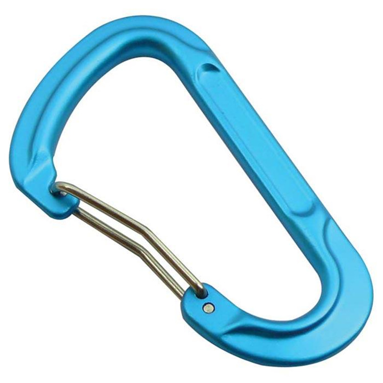 Forged D Carabiner Assort