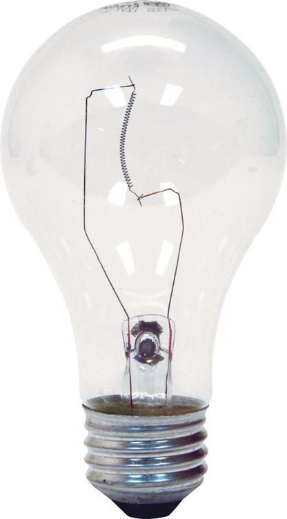 78795 Bulb 29W A19 2Pk
