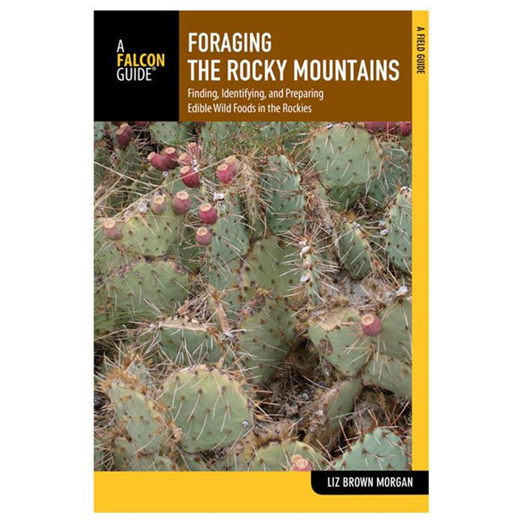 Foraging Rocky Mts