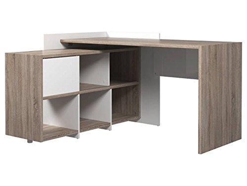 Desk with 6 Shelf Bookcase