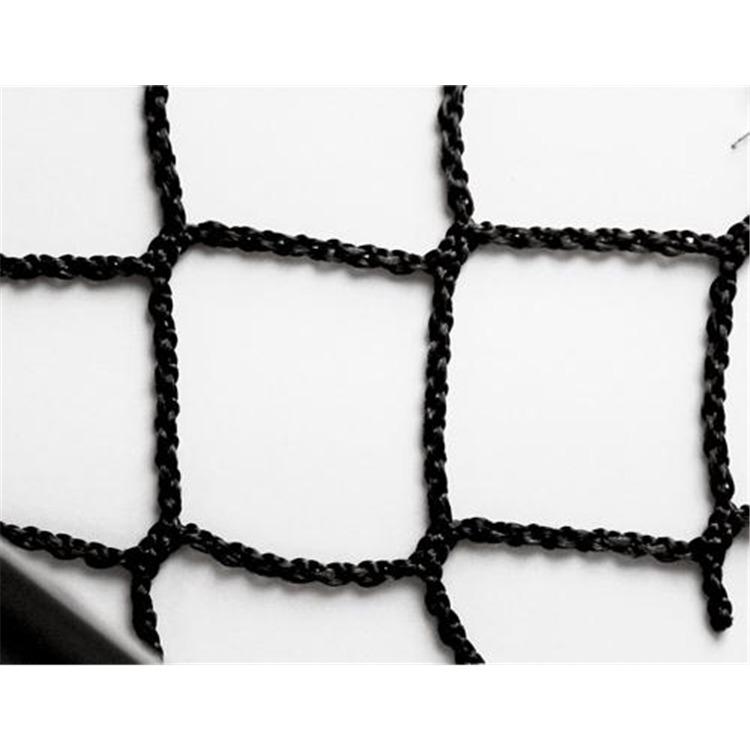 #504 Htpp Net Black W/rope Border