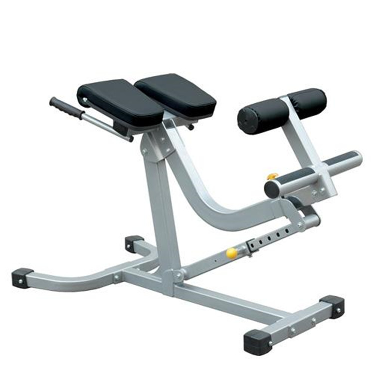 BSN Sports Back & Abdominal Exercise Bench