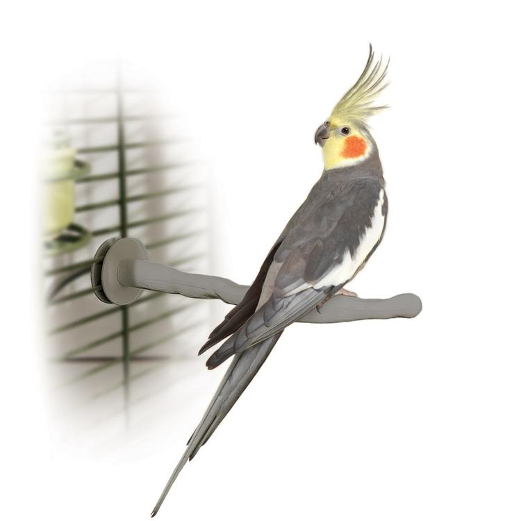 Bird Thermo-Perch
