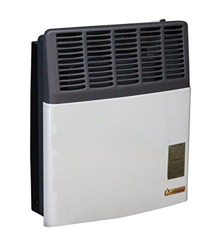 Direct Vent 11,000 BTU Heater LP Gas