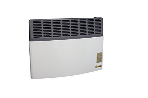 Direct Vent 17,000 BTU Heater LP Gas