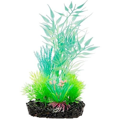 Extra Small Bamboo Leaf Glow Plant 6