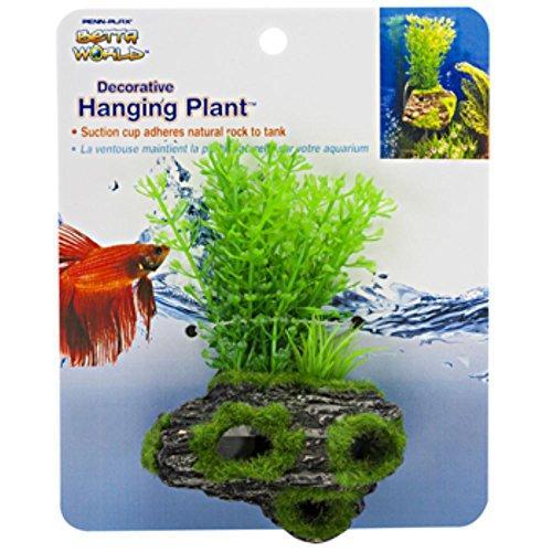 Ceramic Moss Plants - 5? H
