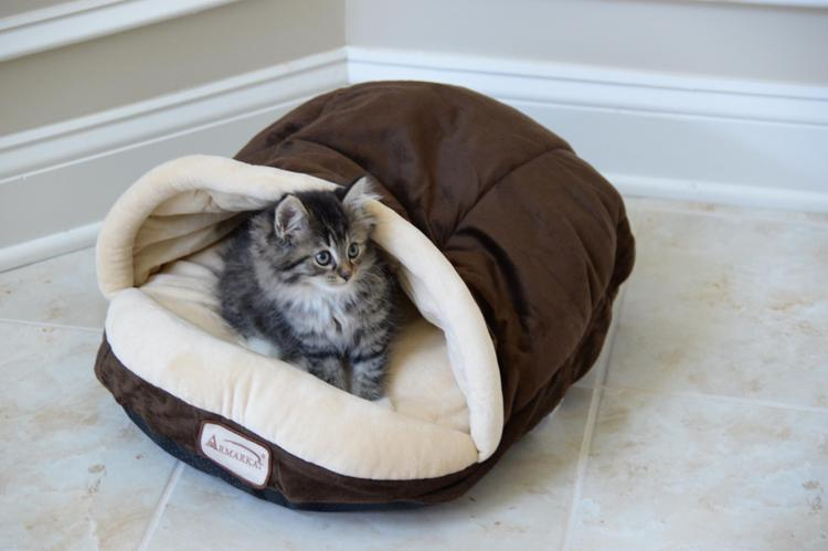 Armarkat Slipper Shape Pet Bed