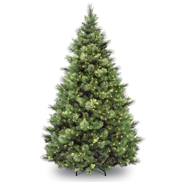 National Tree Carolina Pine Tree with Clear Lights [Item # CAP3-306-65]