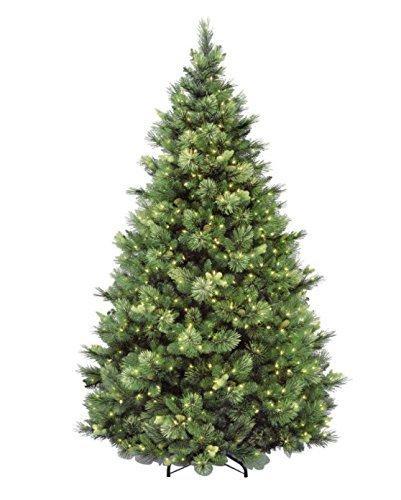 Carolina Pine Tree with Clear Lights