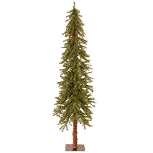 National Tree Hickory Cedar Tree [Item # CED7-60-S]