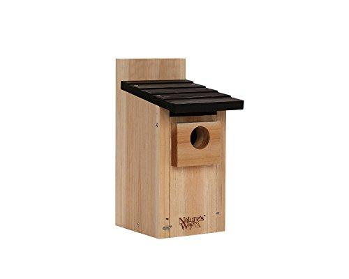 Cwh3 Bluebird Box House