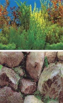 Grassy Plant / Boulders ? 24? X 50?
