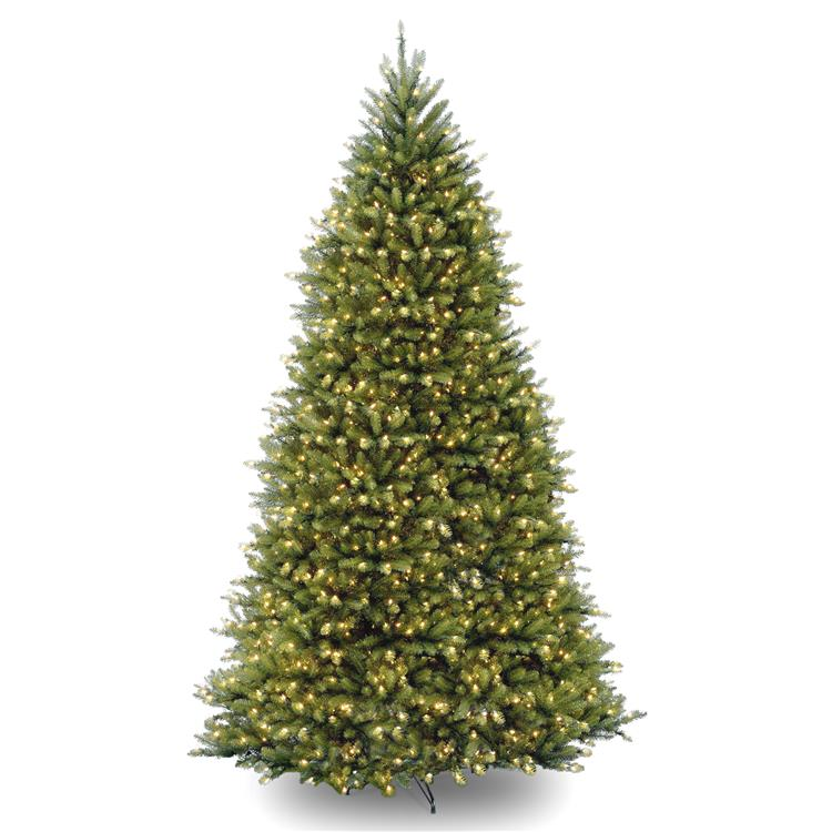 National Tree Dunhill Fir Tree with Clear Lights