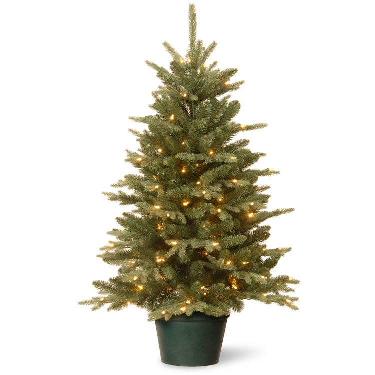 National Tree 3 ft  Everyday Collection Evergreen Tree with Clear Lights [Item # ED3-307-30]