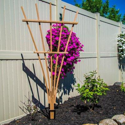 Expandable Fan Trellis Kit