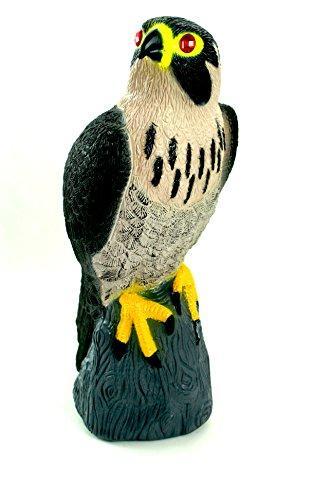 Falcon Decoy