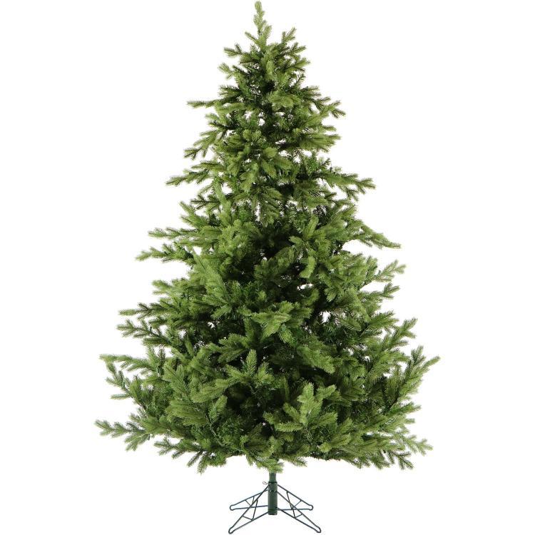 Foxtail Pine Christmas Tree