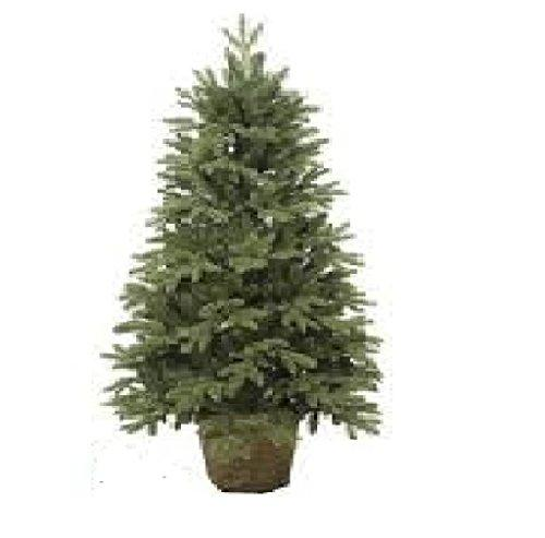 Northern Cedar Teardrop Christmas Tree in Decorative Pot with Clear LED Lights