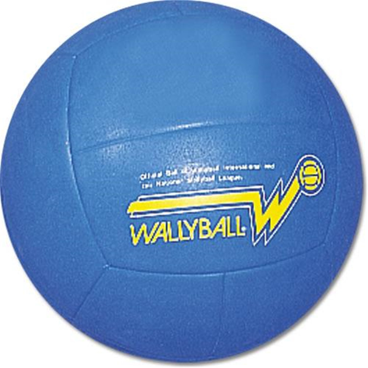 BSN Sports SSG Official Wallyball Ball