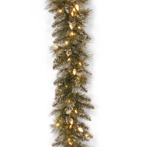National Tree Glittery Bristle Pine Garland with Warm White LED Lights