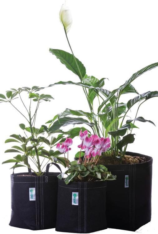 Geo-Gardenkit Garden Kit Combo